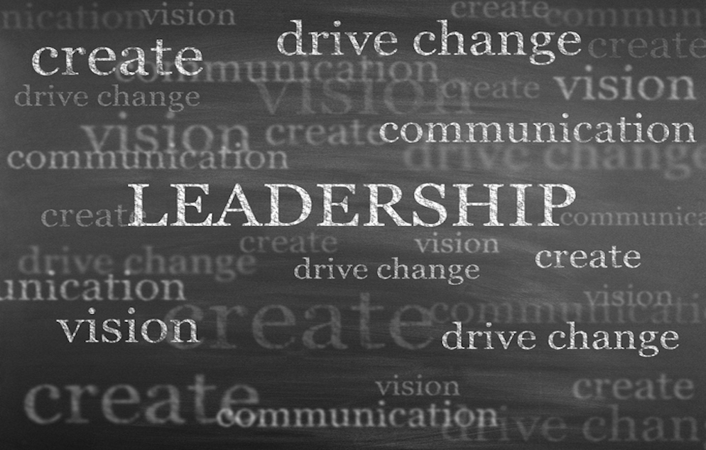 Word cloud graphic including the words create, drive change, vision, and the word LEADERSHIP, presented in capital letters, in the center of the image.