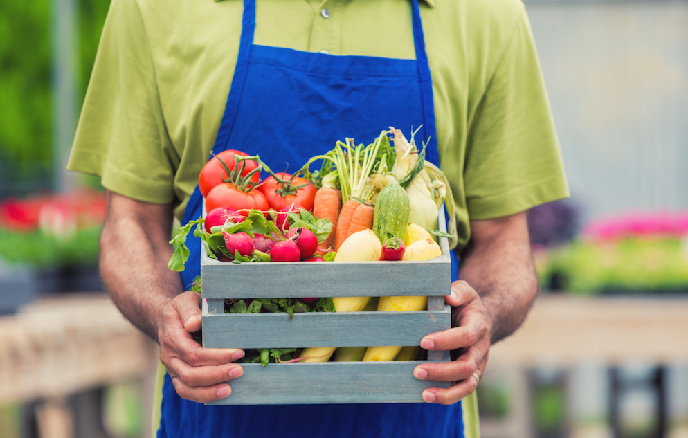 African American mans hands holding a box on fresh vegetables. Focus is on hands and box, head is out of frame. He is wearing a green shirt and blue apron.