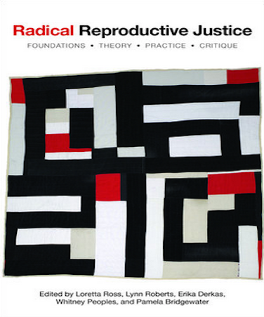 Cover of Radical Reproductive Justice book
