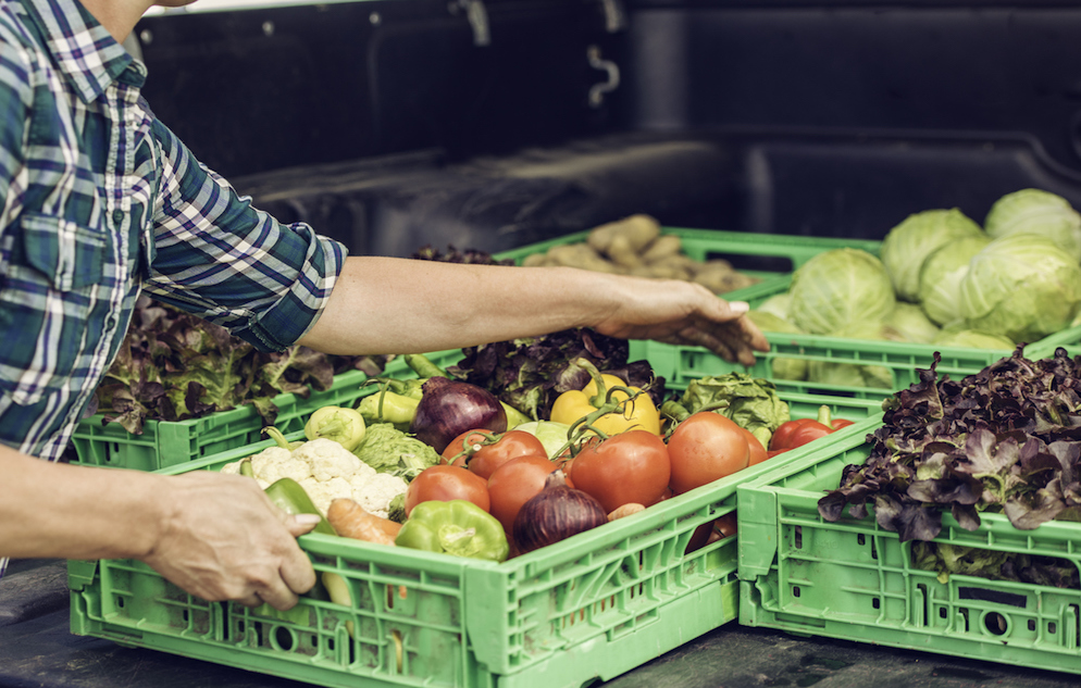Shot of hands holding crates containing vegetables