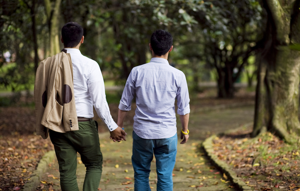 A gay couple in the park holding hands